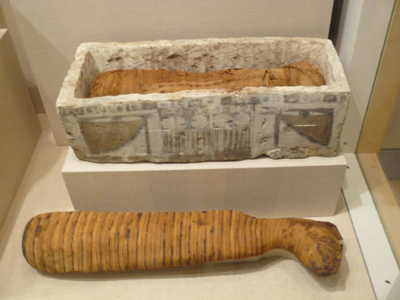 Cat Mummy Sarcophagus 350BC