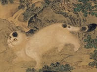 Wasps and Cat, 10th C, Tang Dynasty cat in china