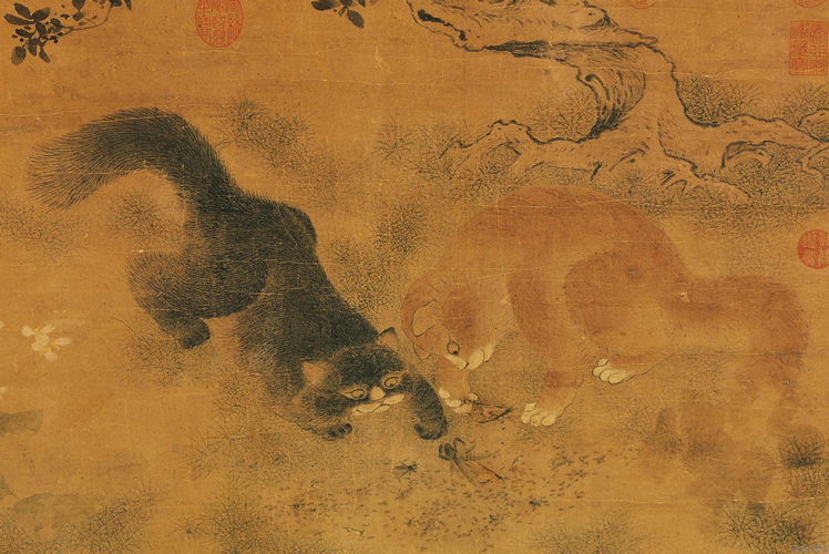 playing cats, national palace museum, cat in China
