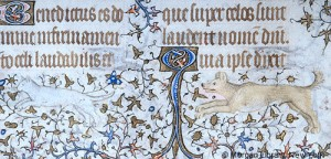 Dog Chases a Cat 1420-1425 Hours of Charlotte of Savoy Queen Consort of LouisXI Paris MSM.1004 fol.36vd Source: P. Morgan Library, New York, cats in books of hours, medieval cats