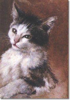Julius Adam Black and white cat