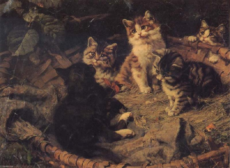 A Group of Kittens Julius Adam II Private Collection