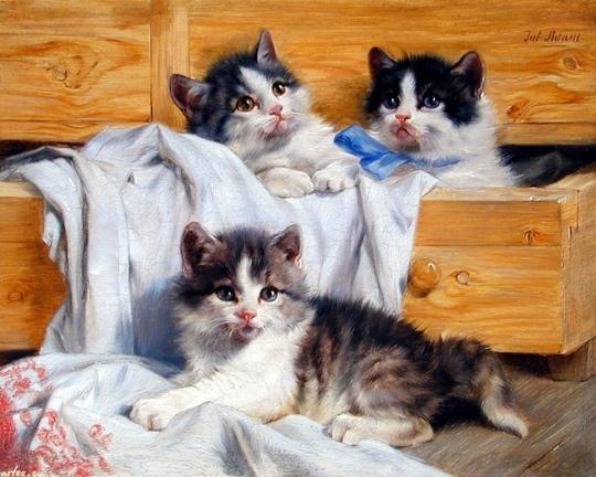 Kittens Playing in a Drawer Julius Adam II