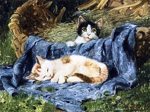 Julius Adam, Two Kittens, cat art