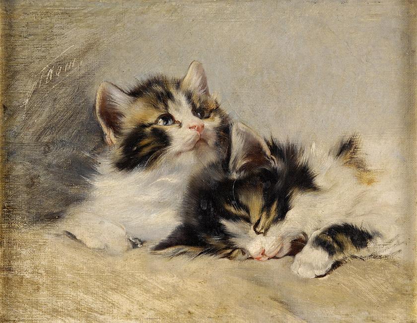 Two kittens julius adam
