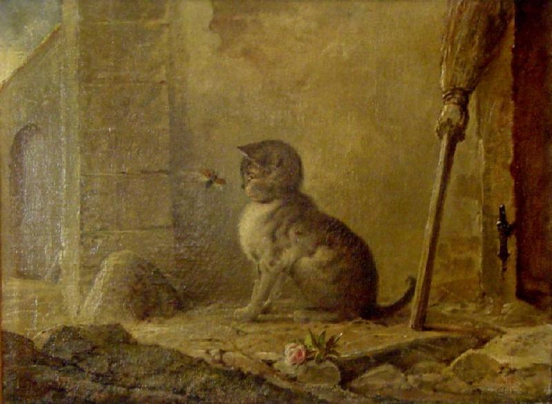 Katze Mit einem Mailkaefer Julius Adam Private Collection