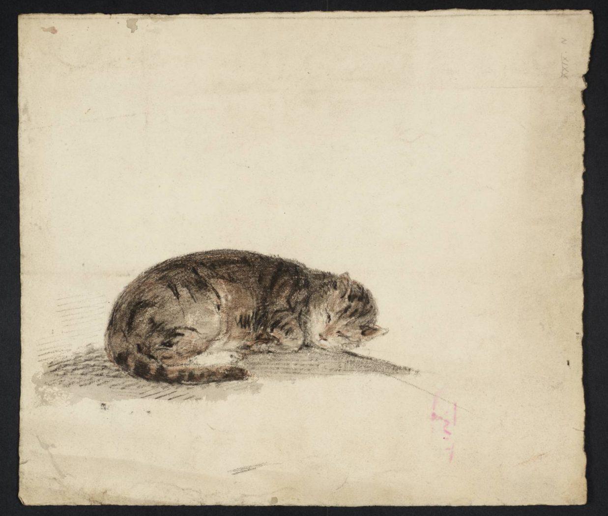 A Sleeping Cat 1796 Gwen John Tate Museum