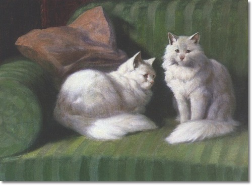 Two White Persian Cats on a Green Sofa Private Collection