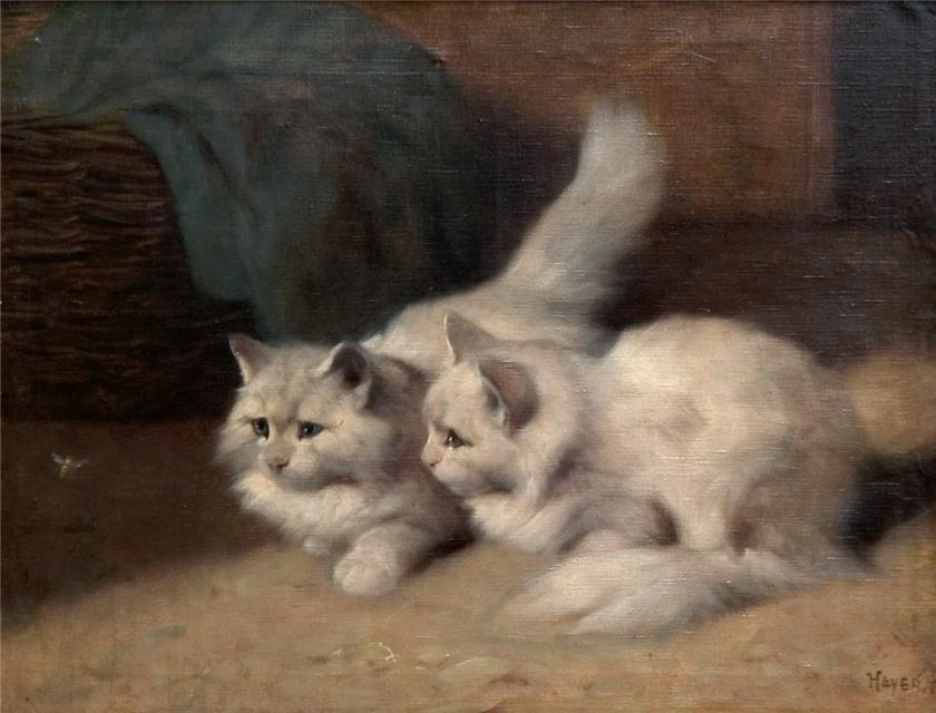 Two Cats Watching a Fly Arthur Heyer Private Collection