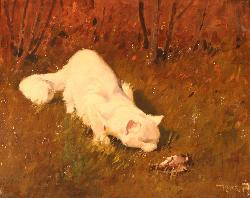 Cat and Dead Bird Private Collection