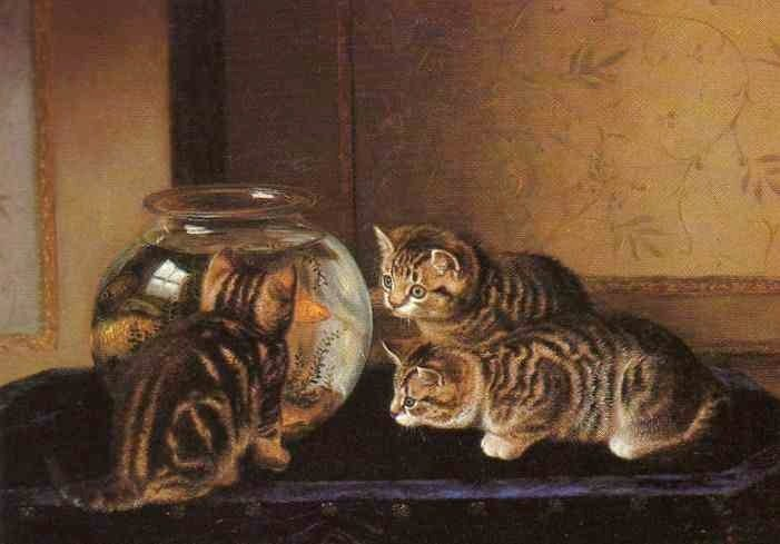 No Where to Hide Horatio Henry Couldrey 1882 Private Collection cats in art