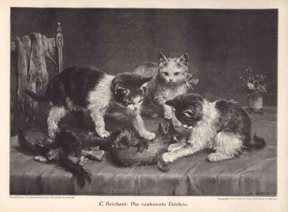 cats in 19th century art