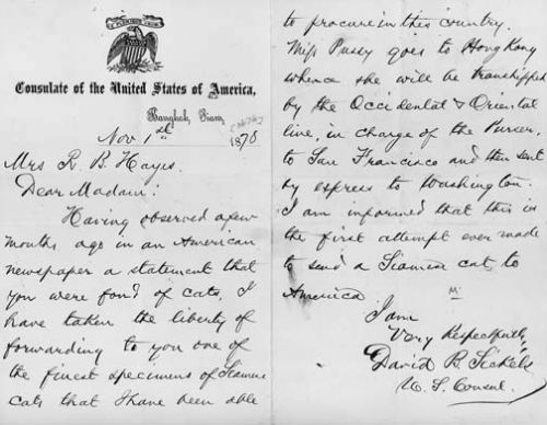 David B. Sickels' letter to Lucy Webb Hayes regarding Siam, the Cat. November 1, 1878 Source: Rutherford B. Hayes Presidential Center first Siamese cat in America