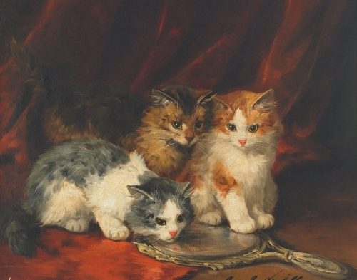 Three Kittens and a Mirror Brunel de Neuville