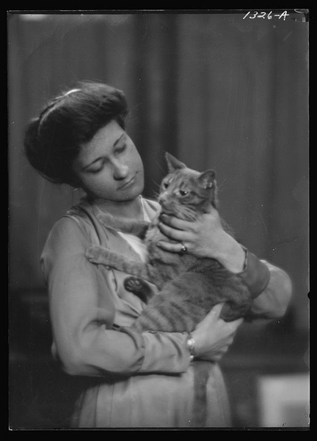 Unknown Woman with Buzzer the Cat 1910 vintage cats