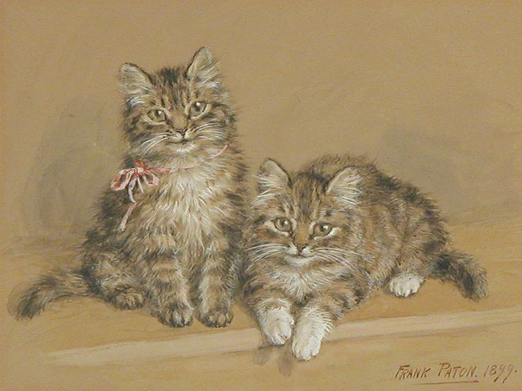 Two Kittens 1899 private collection
