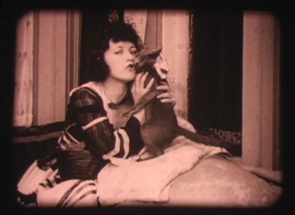 Marie Prevost and Pepper cats in film, felines in film