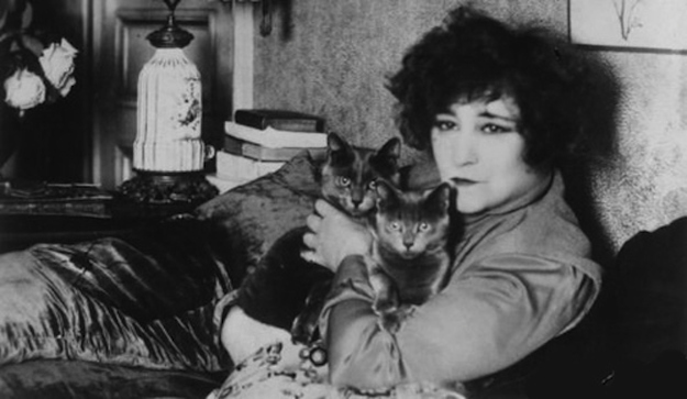 cats in literature, Colette and cats