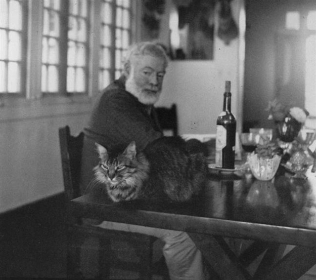 Ernest Hemingway cats in literature
