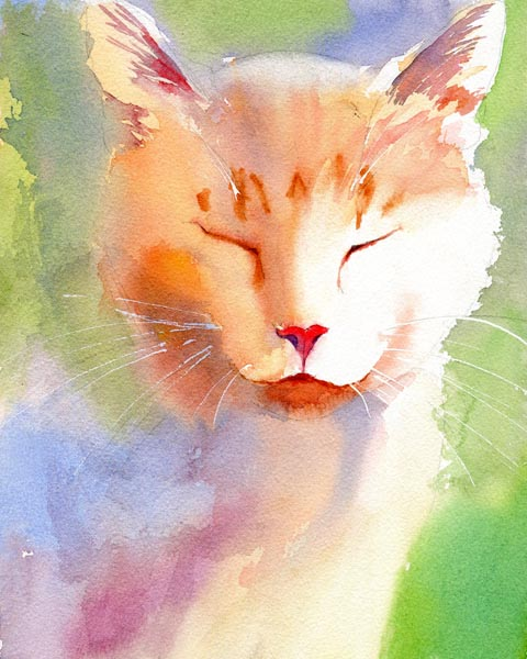I Purr Therefore I Am, Rachel Parker, cat print