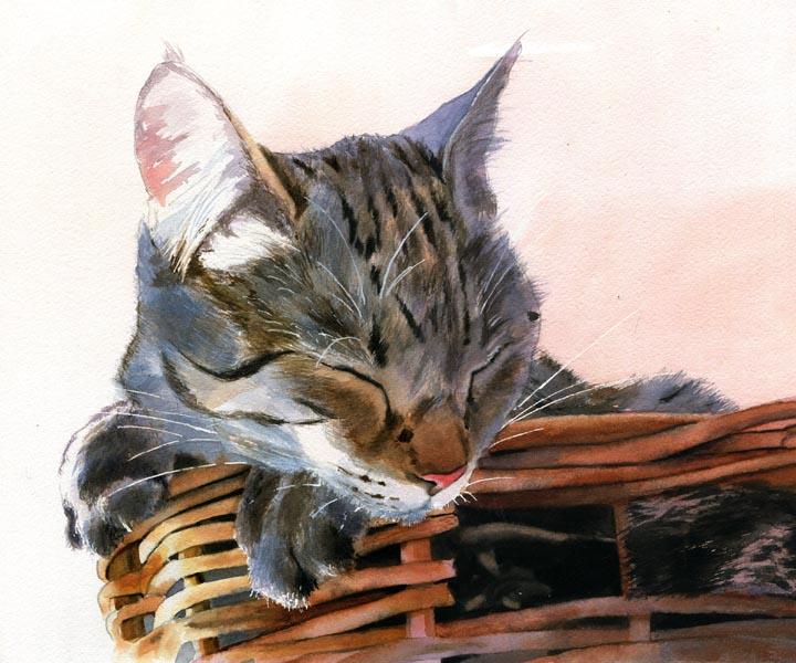 Basket Case, Rachel Parker, cats in art, cat paintings