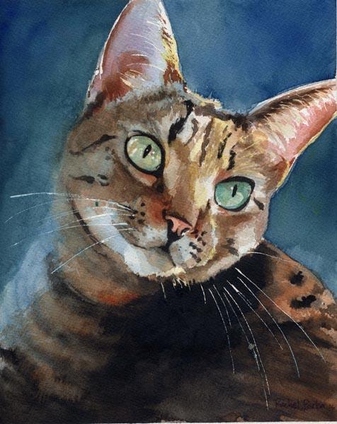 Inky, Rachel Parker, cat art, cat watercolors