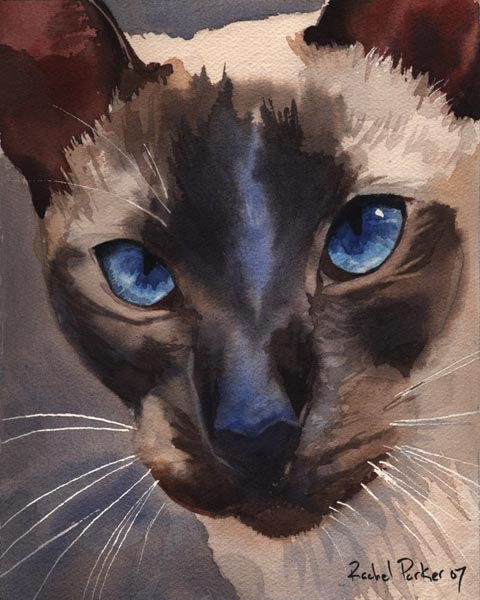 Prince Charming, cat paintings
