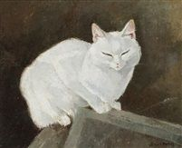 Chat blanc endormi, Lehmann Nam