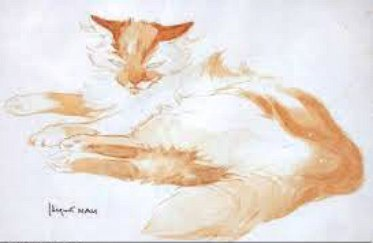 White and Ginger Cat, Jacques Lehmann Nam, art cats, cat sketches