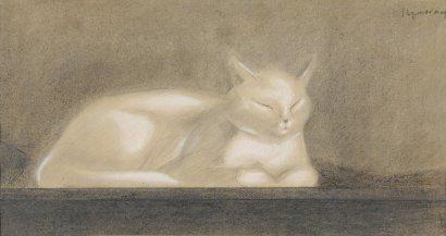 White Sleeping Cat, Nam, art cats