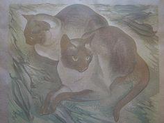 Two Siamese Cats 1948, Agnes M. Parker