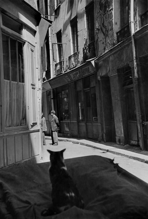 Cat in Paris 1952 Cartier-Bresson