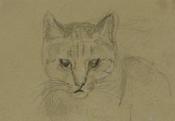 Head of a Cat, JF Lewis, cats in art