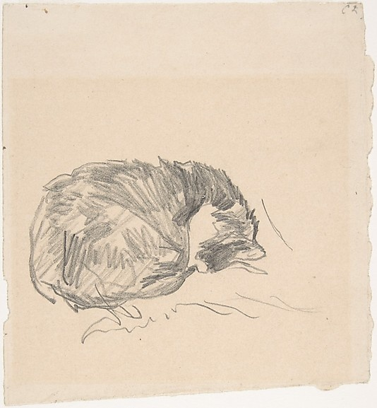 A Cat Curled Up, Sleeping - 1861 Manet