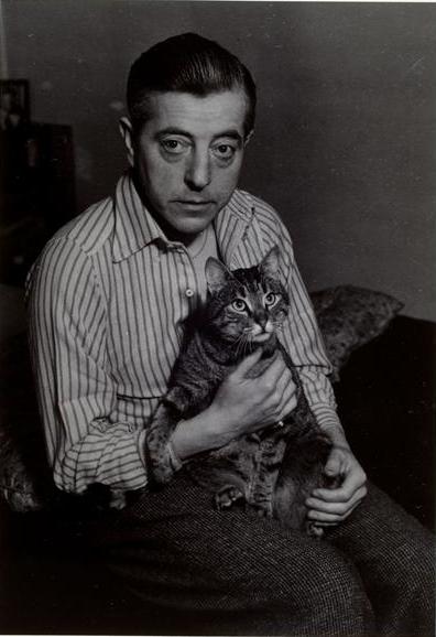 Jacques Prévert and Cat 1948, cat photography