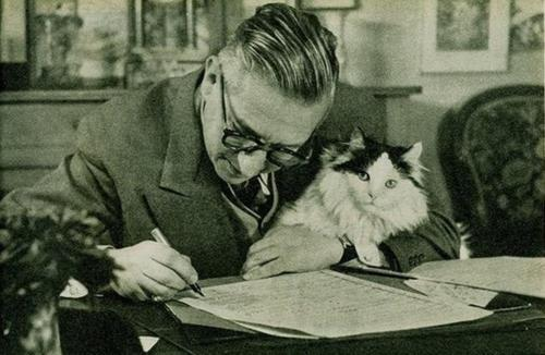 Jean Paul Sartre with Cat, cat photography
