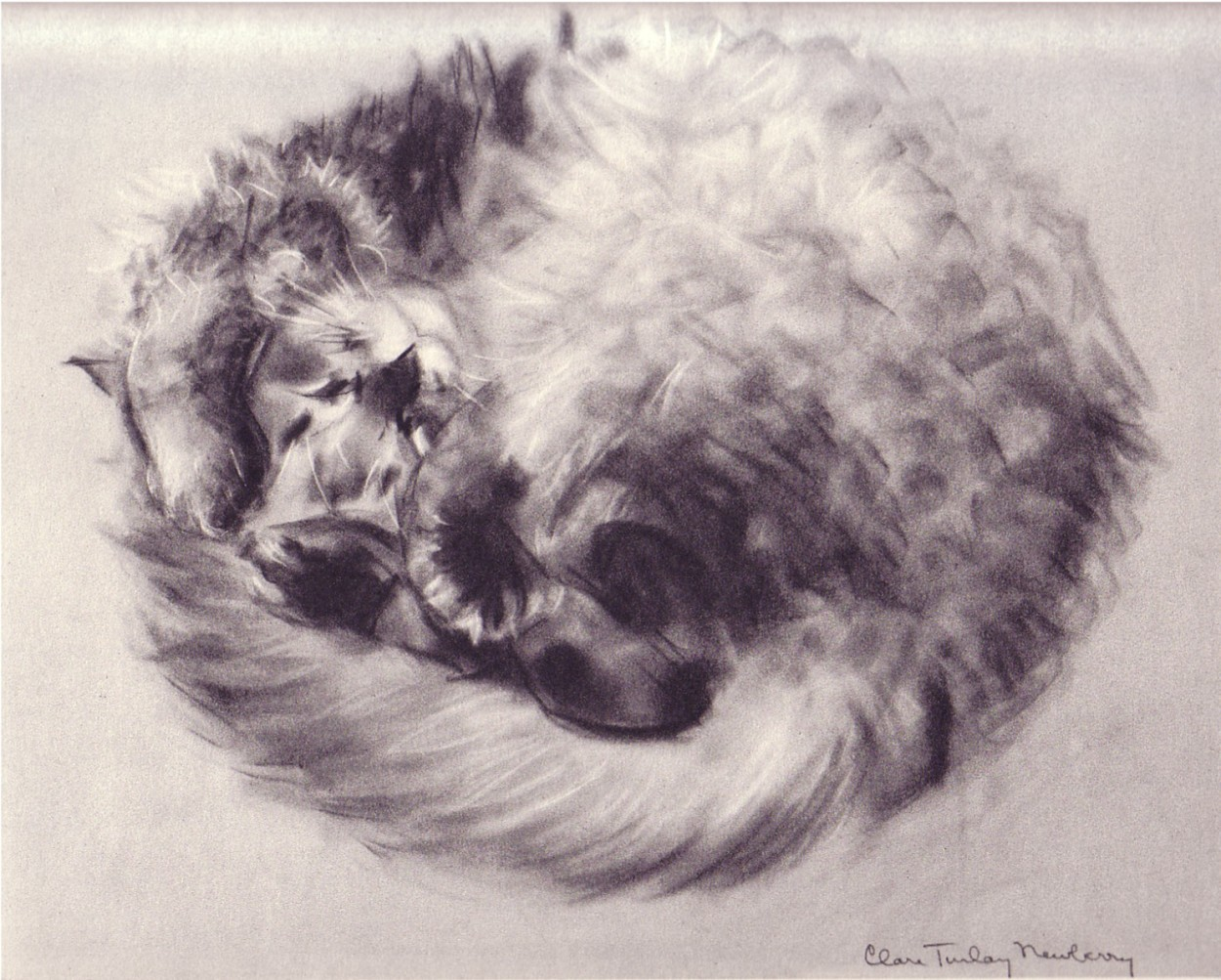 C. Turlay Newberry, Ball of Fur