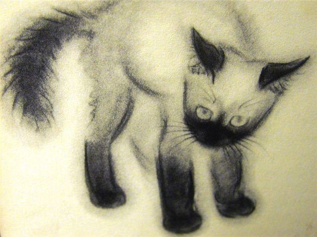 Siamese Kitten C. Turlay Newberry
