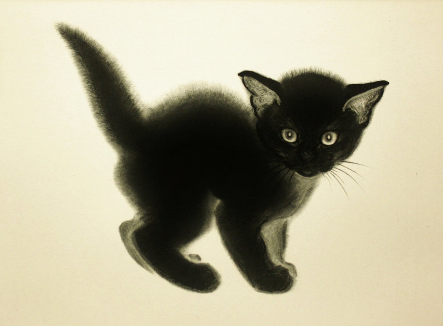 C. Turlay Newberry, black kitten