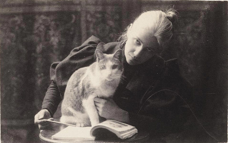 Thomas Eakins 1880s Amelia Van Buren with a Cat