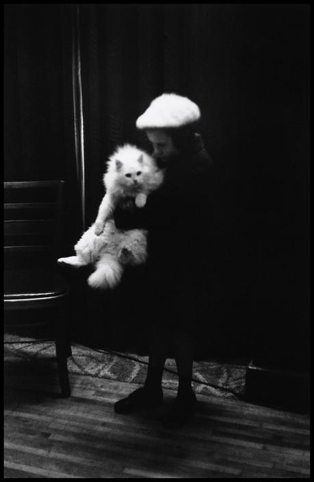 Elliott Erwitt, Child with White Cat, New York 1953