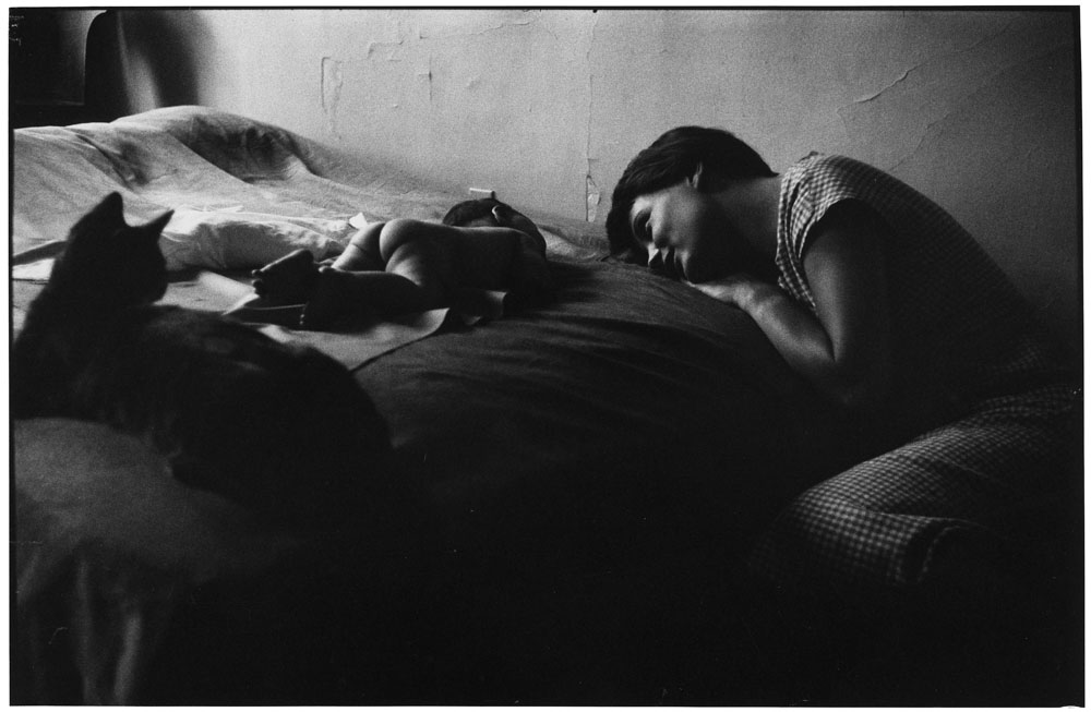 Elliott Erwitt, Wife and first child with cat
