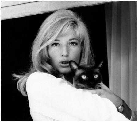 Monica Vitti holding a Cat on set of Infidelity, Elliott Erwitt
