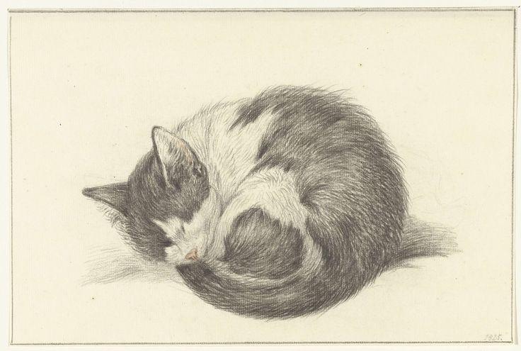 Black and White Cat sleeping, Jean Bernard, 1825