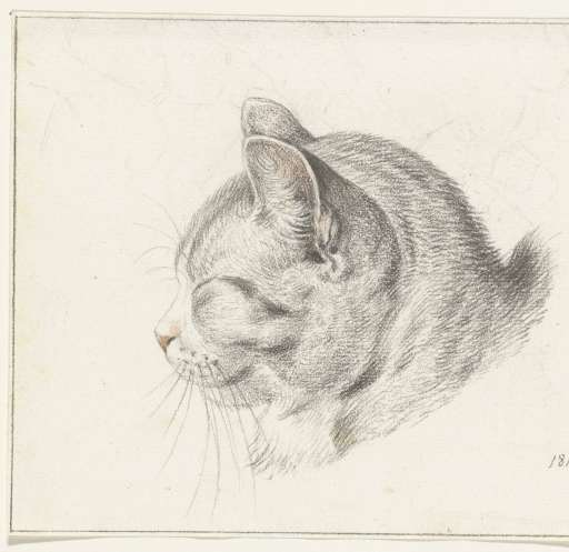 Cat Head Facing Left, 1813, Jean Bernard