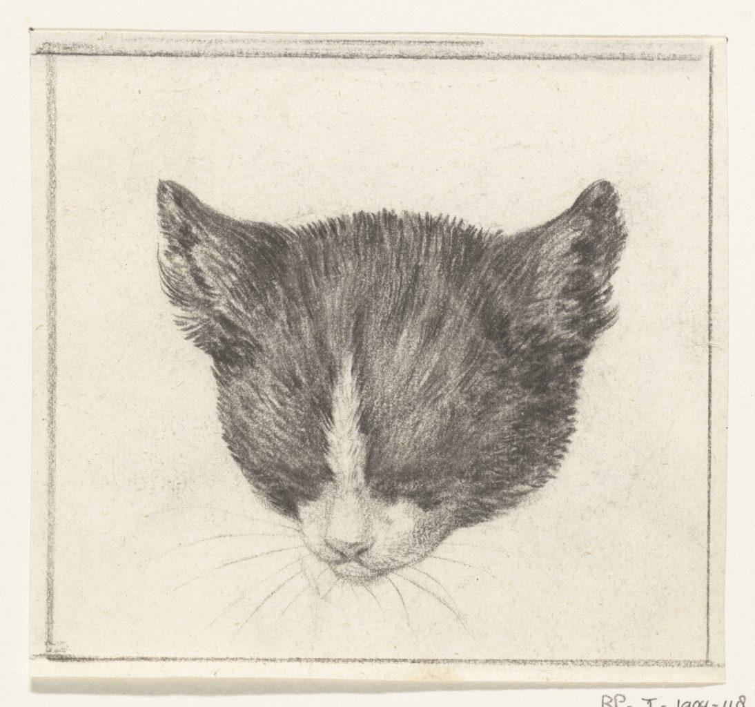 Cat Head Looking Down, Jean Bernard