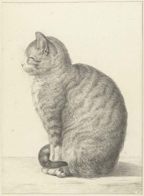 Jean Bernard (1765-1833), Smiling Cat
