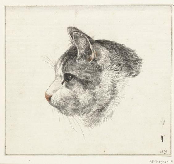cat Jean Bernard 18191