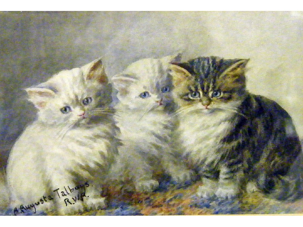 3 kittens Agnes Augusta Talboys private collection