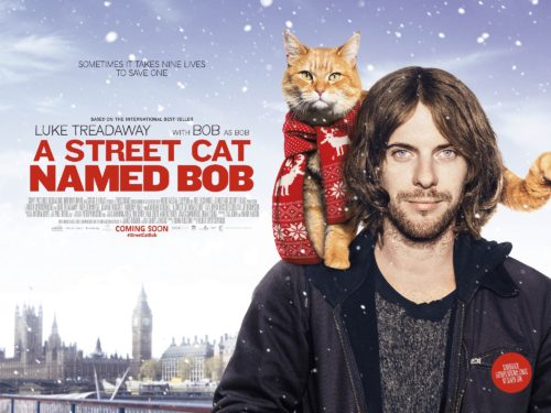 Cats in Film - A Street Cat Named Bob (2016), cat film reviews at The Great Cat